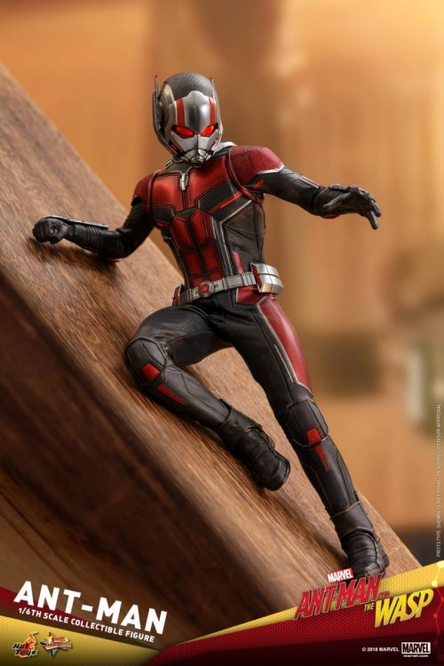 Ant-Man-And-The-Wasp-Hot-Toys-Ant-Man-03.jpg
