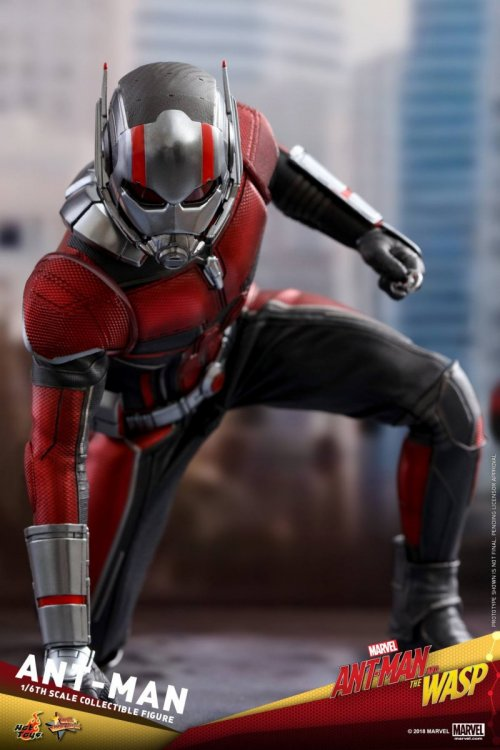 Ant-Man-And-The-Wasp-Hot-Toys-Ant-Man-05.jpg