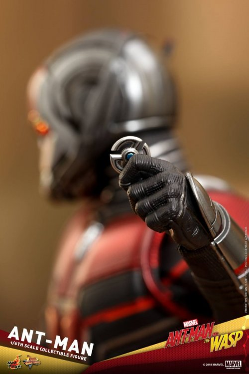 Ant-Man-And-The-Wasp-Hot-Toys-Ant-Man-08.jpg