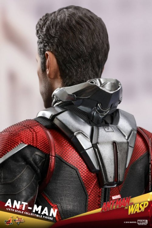 Ant-Man-And-The-Wasp-Hot-Toys-Ant-Man-09.jpg
