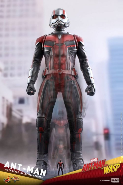 Ant-Man-And-The-Wasp-Hot-Toys-Ant-Man-10.jpg