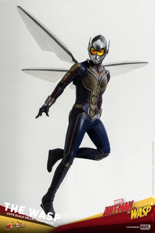 Ant-Man-And-The-Wasp-Hot-Toys-Wasp-14.jpg