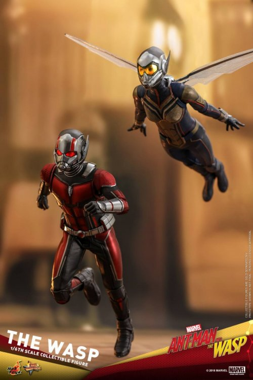 Ant-Man-And-The-Wasp-Hot-Toys-Wasp-19.jpg