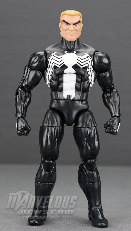 Marvel-Legends-Venom-Wave-Venom-And-Spider-Ham25.jpg