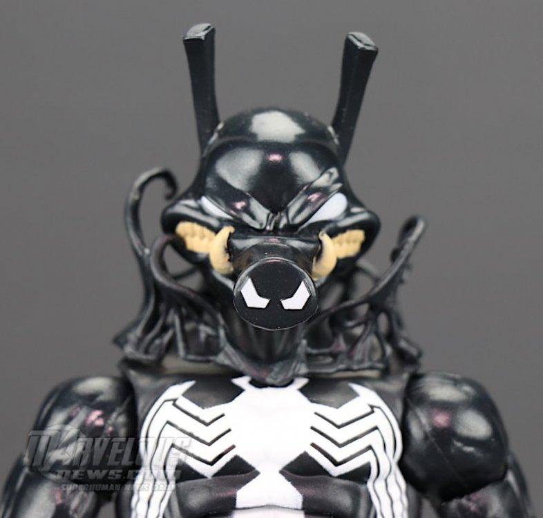 Marvel-Legends-Venom-Wave-Venom-And-Spider-Ham60.jpg