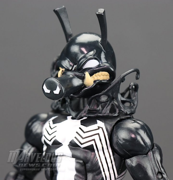 Marvel-Legends-Venom-Wave-Venom-And-Spider-Ham62.jpg