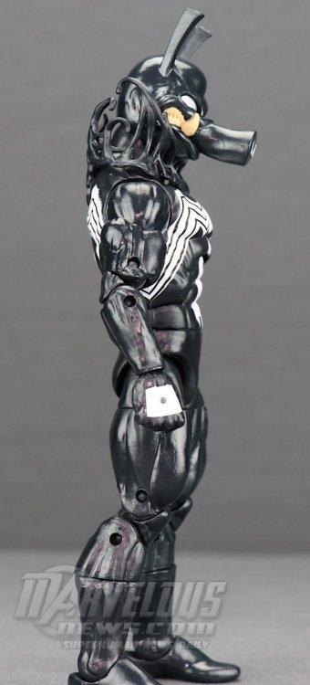Marvel-Legends-Venom-Wave-Venom-And-Spider-Ham64.jpg