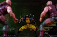 Revoltech-Wolverine-By-Darcreign-01.jpg