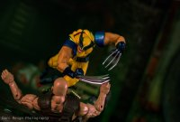 Revoltech-Wolverine-By-Darcreign-02.jpg