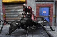 SH-Figuarts-Ant-Man-With-Ant-03.jpg