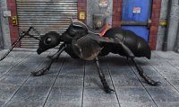 SH-Figuarts-Ant-Man-With-Ant-06.jpg