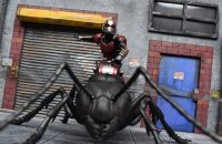 SH-Figuarts-Ant-Man-With-Ant-11.jpg