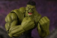 SH-Figuarts-Infinity-War-Hulk-08.jpg