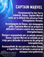 Marvel-Legends-Captain-Marvel-Movie 4.jpg
