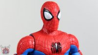Six-Arm-Spider-Man-Marvel-Legends-23.JPG